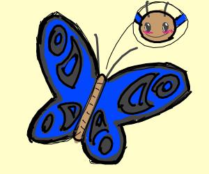 A cute butterfly