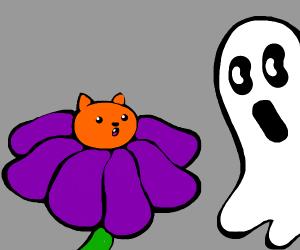 cat flower fighting ghost sun karate