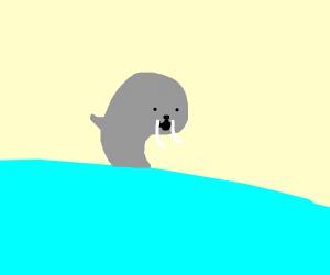 Bootiful Walrus :D