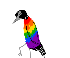 a beautiful gay birb