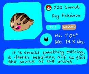 Swinub at pokedex