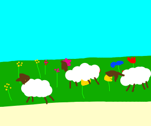 Sheep in a garden