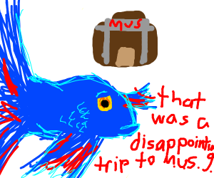 Beta fish has a disappointing trip to the mus