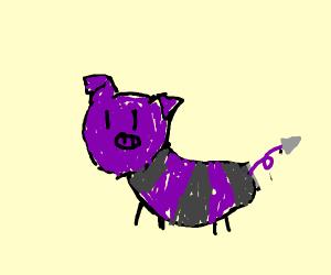 Purple Pig bee!