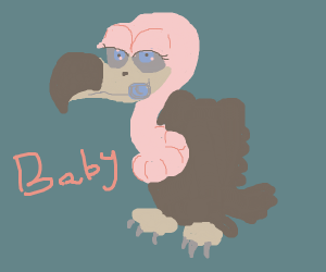 A baby vulture