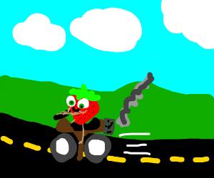 Strawberry has good motorbike skills