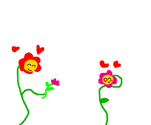 Flower gives flower to loved one