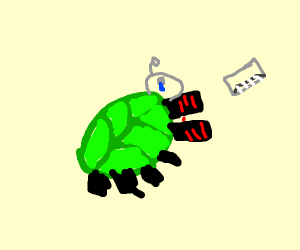 depressed green beetle