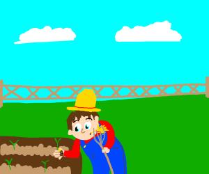 Peanut on farm