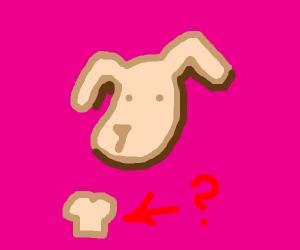 Cute dog. What bread is it?