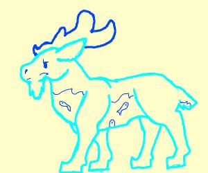 watery moose