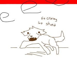 spastic dog