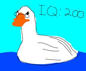 Smart goose