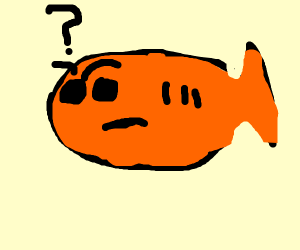 confused fish