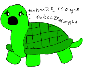 turtle with asthma
