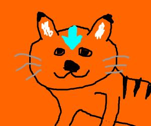 Avatar Kitty