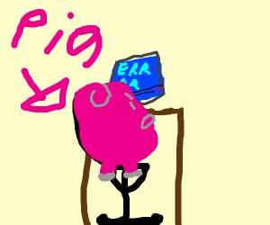 Angry pig at computer :3