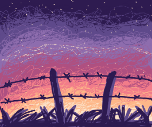 Sunset behind barbed wires