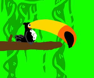 10 percent toucan, 90 percent beak