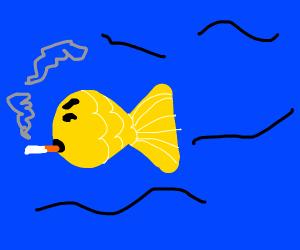 Yellow fish smoking a cigarette