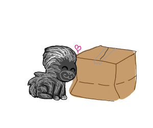 Porcupine hugging a Package