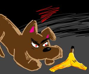 Dog resents banana peel