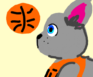 basketball bunny