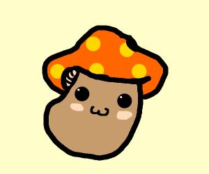 Silly Mushroom