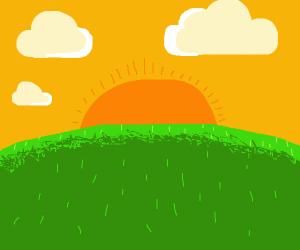 Sunrise on Grassy Field
