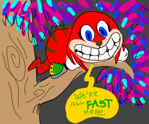 Cheshire echidna says what you were thinking