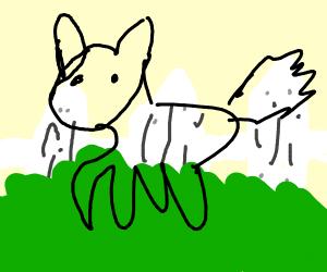 Werewolf crossing a Lawn