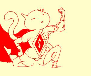 super man cat