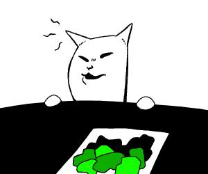 Cat at table meme