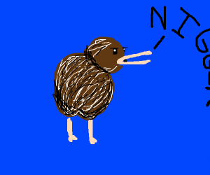 kiwi birds are able to say the n word
