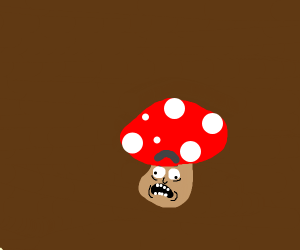 Red mushroom with white spots