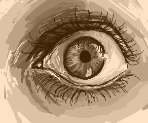 Highly detailed eye