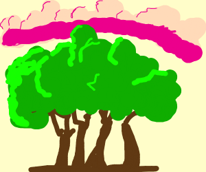 trees with pink clouds around them