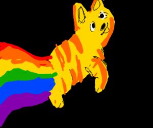 Garfield as Nyan Cat