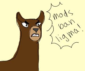 """Angry Ligma says """"mods ban ligma""""."""