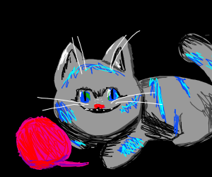 Cheshire playing with yarn ball