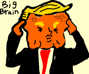 Trump does big brain during storm.