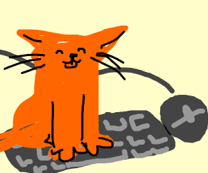 dxx (the cat stepped on the keyboard)