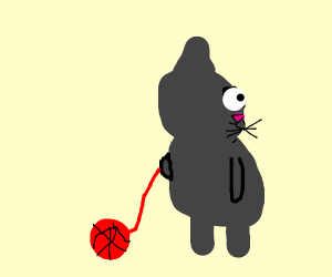 cat taking its pet ball of wool for a walk