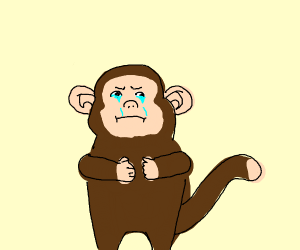 Crying Monkey