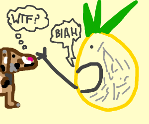 Pineapple yells at a confused dog