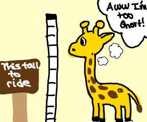 Short giraffe measures itself