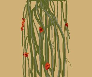 Beautiful flowers in eery vine