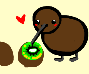 A Kiwi (Bird) Eating a Kiwi (Fruit)