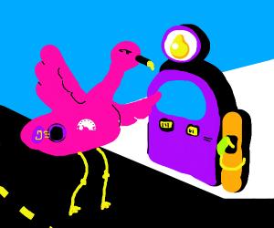 Flamingo needs gas