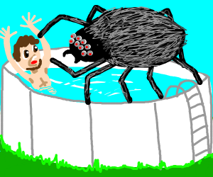 Man in pool gets attacked by giant spider